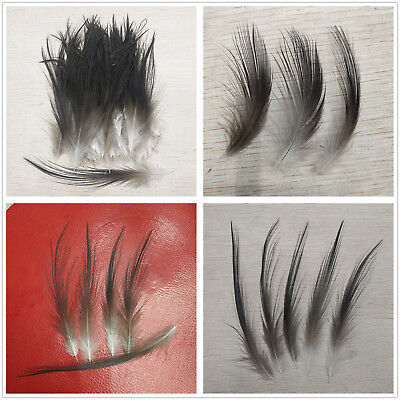 Beautiful 10-100pcs Rare Black Heron Silk Feathers 2-8 inches/5-25 cm Decoration
