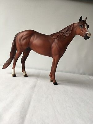Peter Stone co. Brown horse