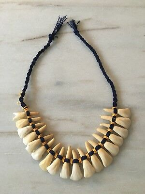 NATIVE AMERICAN INDIAN ? HORSE TOOTH NECKLACE TEETH VINTAGE or ANTIQUE NAVAJO?
