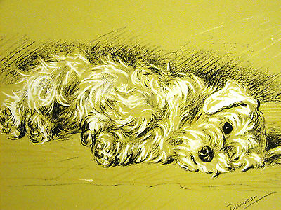 """Lucy Dawson Exhausted SEALYHAM """"Bustle Doesn't Care"""" 1937 Dog Print Matted"""
