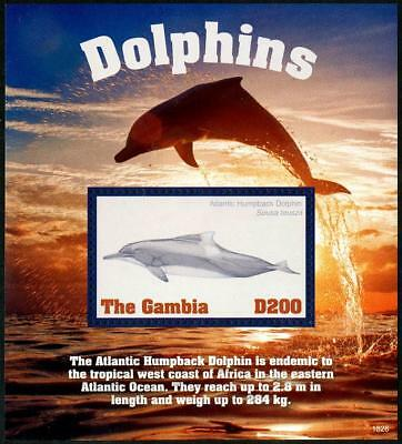 HERRICKSTAMP NEW ISSUES GAMBIA Dolphins Souvenir Sheet
