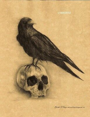 "Fantasy Art Print CROW and SKULL 11""x 8"" on Parchment Paper Gothic From Artist"