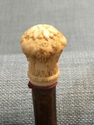 antique bovine bone and bamboo walking cane 1820 carved grapevines