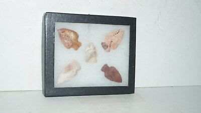 5 Native American Stone Artifact Arrowheads In Enclosed Glass Case