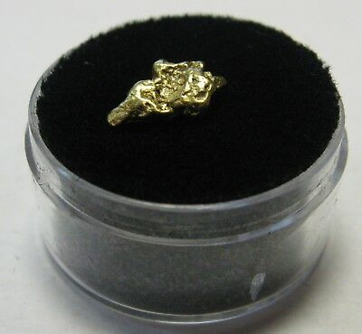Genuine Pure 22k Gold American Nugget Panned in the USA Great Historical Item n4
