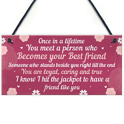 Novelty Funny Best Friend Birthday Christmas Gift Plaque