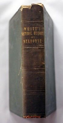1825 NATURAL HISTORY OF SELBORNE Gilbert White EARLY EDITION Natural History