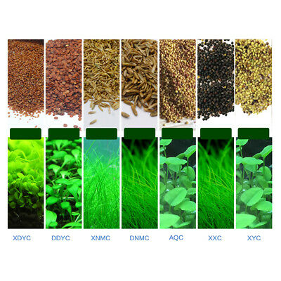 Plant Seed Fish Tank Aquarium Aquatic Water Grass Foreground Plants UK Stock