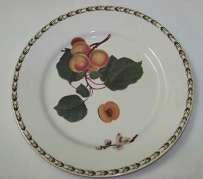 """QUEEN'S Fine China PLATE - HOOKERS FRUIT Apricots Royal Horticultural - 8 5/8"""""""