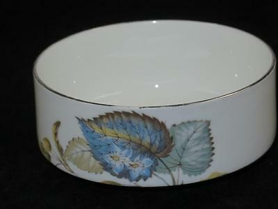 REPLACEMENT China Sugar Bowl 'Royal Sutherland' Hudson & Middleton AUTUMN NUTS