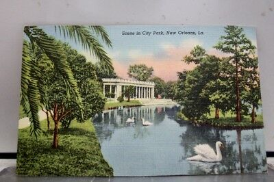 Louisiana LA City Park New Orleans Postcard Old Vintage Card View Standard Post
