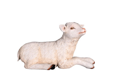 Baby Goat Laying Statue