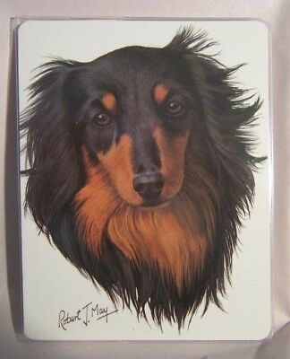 Retired Dog Breed DACHSHUND LONGHAIR Vinyl Softcover Address Book by Robert May