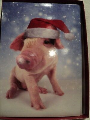 """Leanin Tree """"PIG IN SANTA HAT"""" ~ BOXED CHRISTMAS CARDS ~ Box of 10 Cards"""