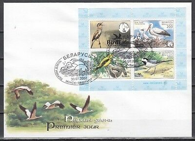 Belarus, Scott cat. 449. Various Birds s/sheet on a First day Cover.