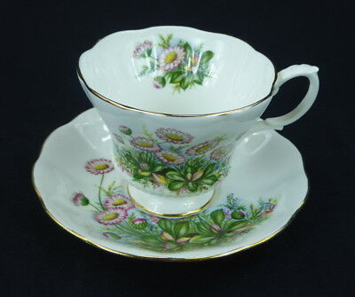 Royal Albert Cup and Saucer Footed Pink Chrysanthemum Daisy England Bone China
