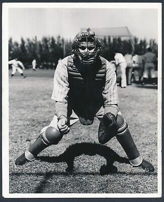 1930's BILL DICKEY Vintage Baseball Photo by William C. Greene