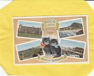 GOOD LUCK   from  NORTH  BERWICK           ,  EAST  LOTHIAN       ( V12 )