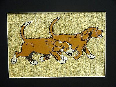 Cecil Aldin 1910 SPANIEL TWIN PUPPIES on a SCENT  maybe SPRINGER Print Matted