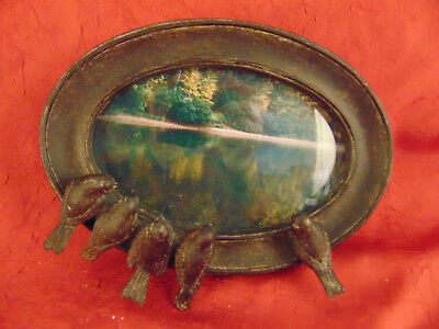 """Vintage Black oval picture frame 5 birds perched 8 3/4"""" x 7"""" wall desk art photo"""