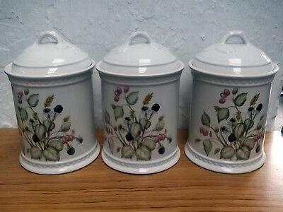 Three Royal Winton Lidded Jars With An Autumn Fruits Pattern