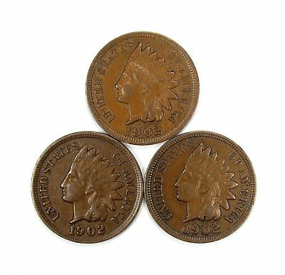 Lot of 3 1902 1c Indian Head Cent Penny XF Extra Fine /XF+ Full Liberty #137071*