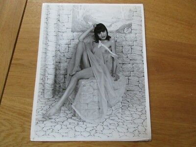 Photo Argentique Nue Art Nude  Girl  Erotisme Pin Up 1970 (3)