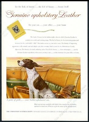 1952 pointer dog in convertible car color art Upholstery Group vintage print ad