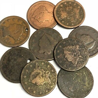 9 x Early US Large Cents, 1800s 1C Coronet / Braided etc, low grades, Lot #13