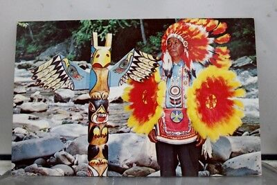 Great Smoky Mountains National Park Cherokee Indian Reservation Postcard Old PC