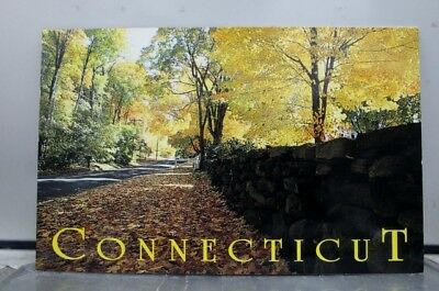 Connecticut CT Stone Fences Colonial Farmers Postcard Old Vintage Card View Post