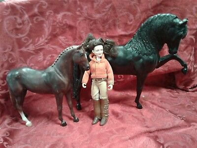 Breyer Horse Lot Traditional Black Stallion Dressage Classic Mare Quarter Rider