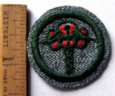 Girl Scout 1936-38 PUBLIC HEALTH BADGE Caduceus Trefoil Doctor Patch TRANSITION
