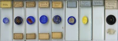 9 Microscope Slides by Yates & Sarjeant
