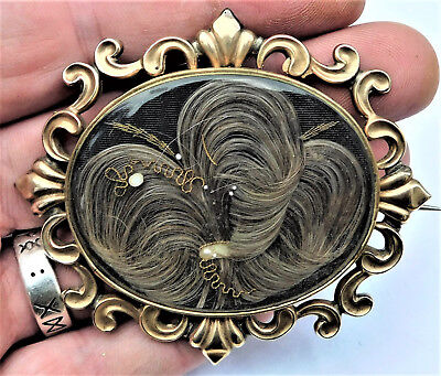 NO RESERV c1880 LARGE Victorian Hair Mourning Brooch Gold Plated Vintage Antique