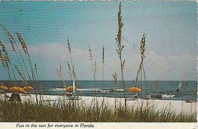 Vintage Postcard Florida Place in the Sun 1979 Continental Size Scalloped Edges