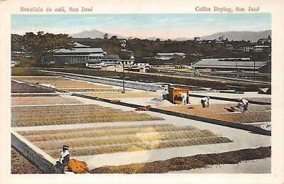 SAN JOSE, COSTA RICA ~ WORKERS DRYING COFFEE OVERVIEW ~ c 1915-30