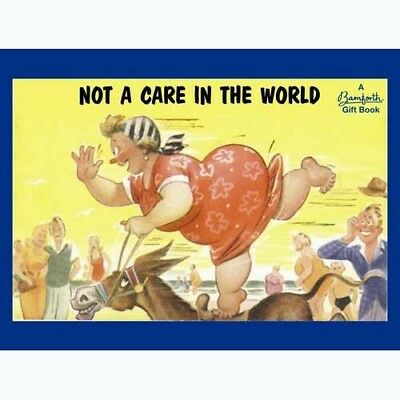 Not A Care in The World - Bamforth - 9781841613734