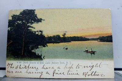 New Jersey NJ Asbury Park Deal Lake North Branch Postcard Old Vintage Card View