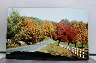 Scenic Country Road Autumn Fall Postcard Old Vintage Card View Standard Souvenir