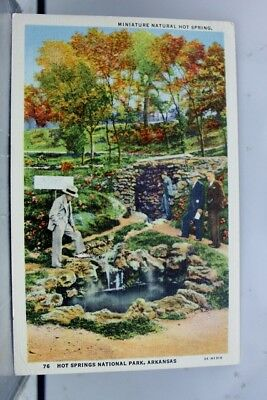 Arkansas AR Hot Springs National Park Miniature Natural Postcard Old Vintage PC