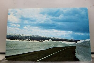 Scenic Beartooth Hiway Postcard Old Vintage Card View Standard Souvenir Postal