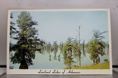 Arkansas AR Lowland Lakes Postcard Old Vintage Card View Standard Souvenir Post