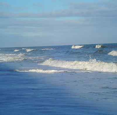 Wyndham Ocean Blvd, February 16-23, 3B, Myrtle Beach, SC, Other Dates Available