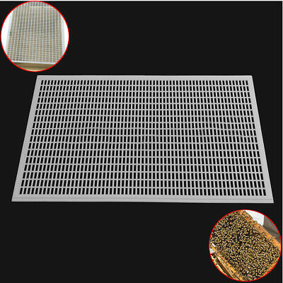 10 Frame Bee Queen Plastic Excluder Trapping Net Grid Beekeeping Tool 41*51CM UK
