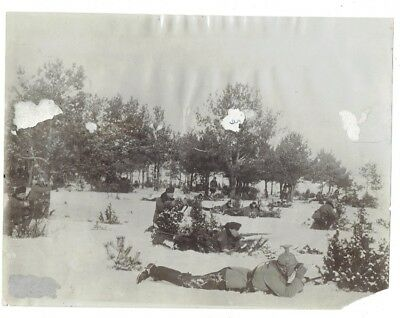 WWI PRESS PHOTO- Austrian cavalry in forests of Carpathian Mountains