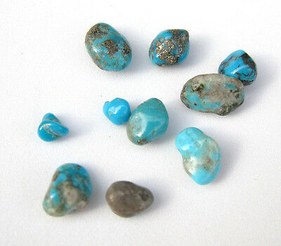 10 Campitos CLOSED MINE Turquoise Natural Nugget LOT specimen Rock Lapidary NR!!