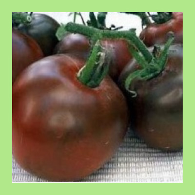 Heritage Seeds 40 TOMATO BLACK RUSSIAN