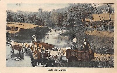 COSTA RICA ~ 2 OX CARTS WITH DRIVERS CROSSING A RIVER ~ c  1904-14