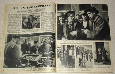 Life in the Elephant. Elephant and Castle, Southwark. Picture Post 1949